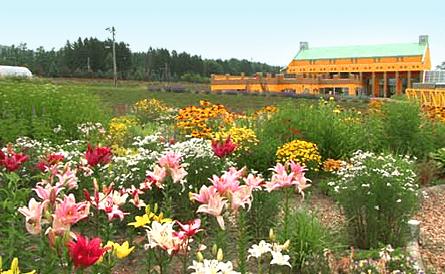 花萝植物园