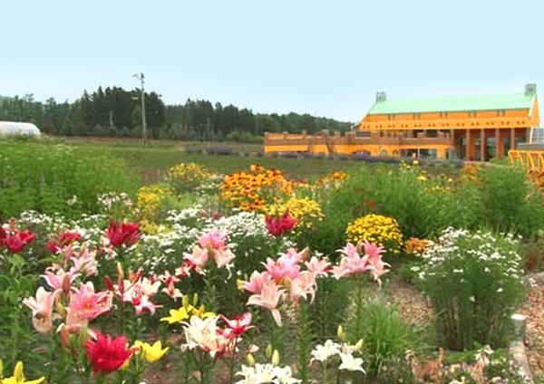 Flower Park Kamu