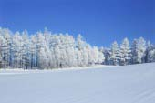 Other Areas of Hokkaido