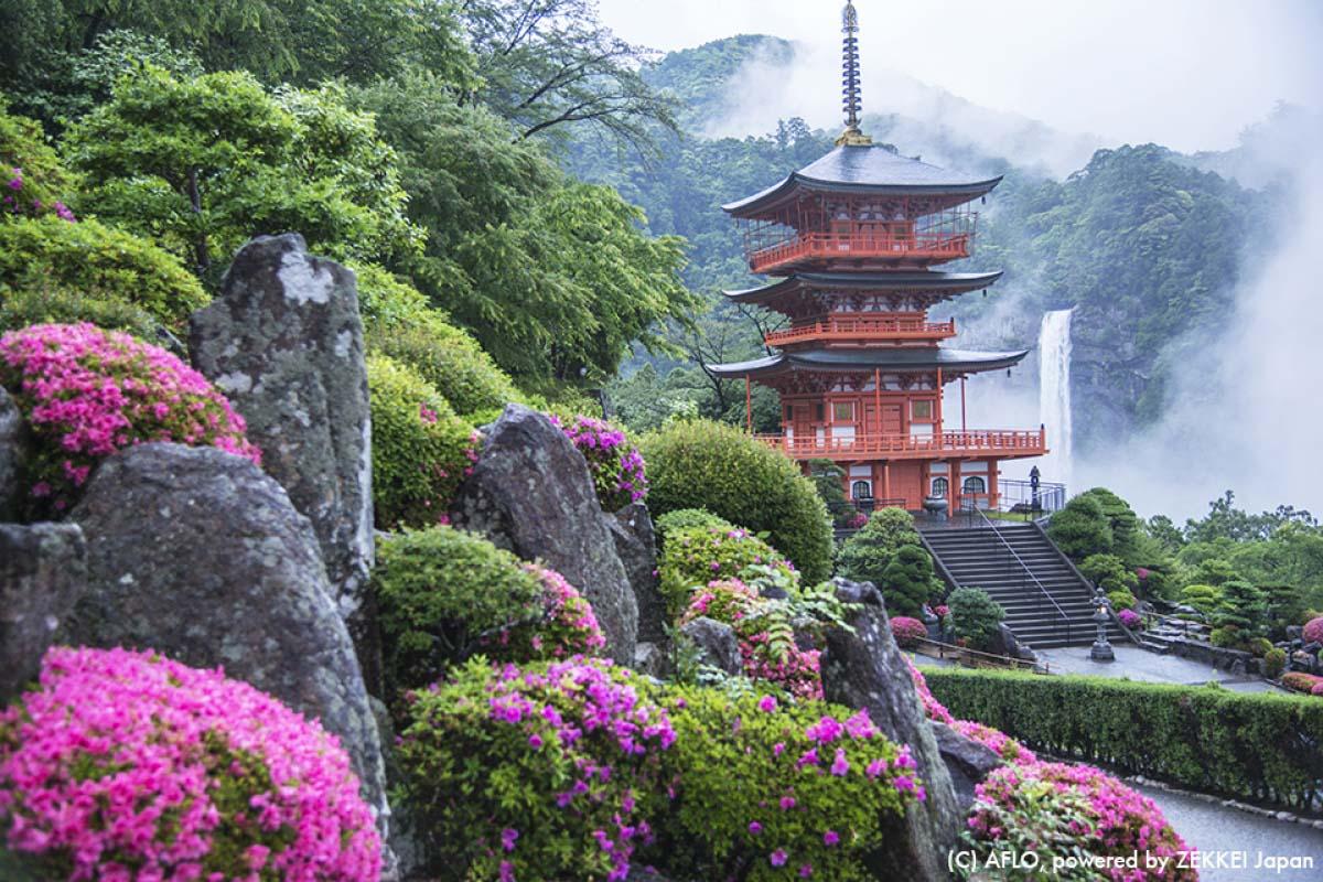 遺世獨立的絕美秘境,嚴選日本必去的世界遺產景點