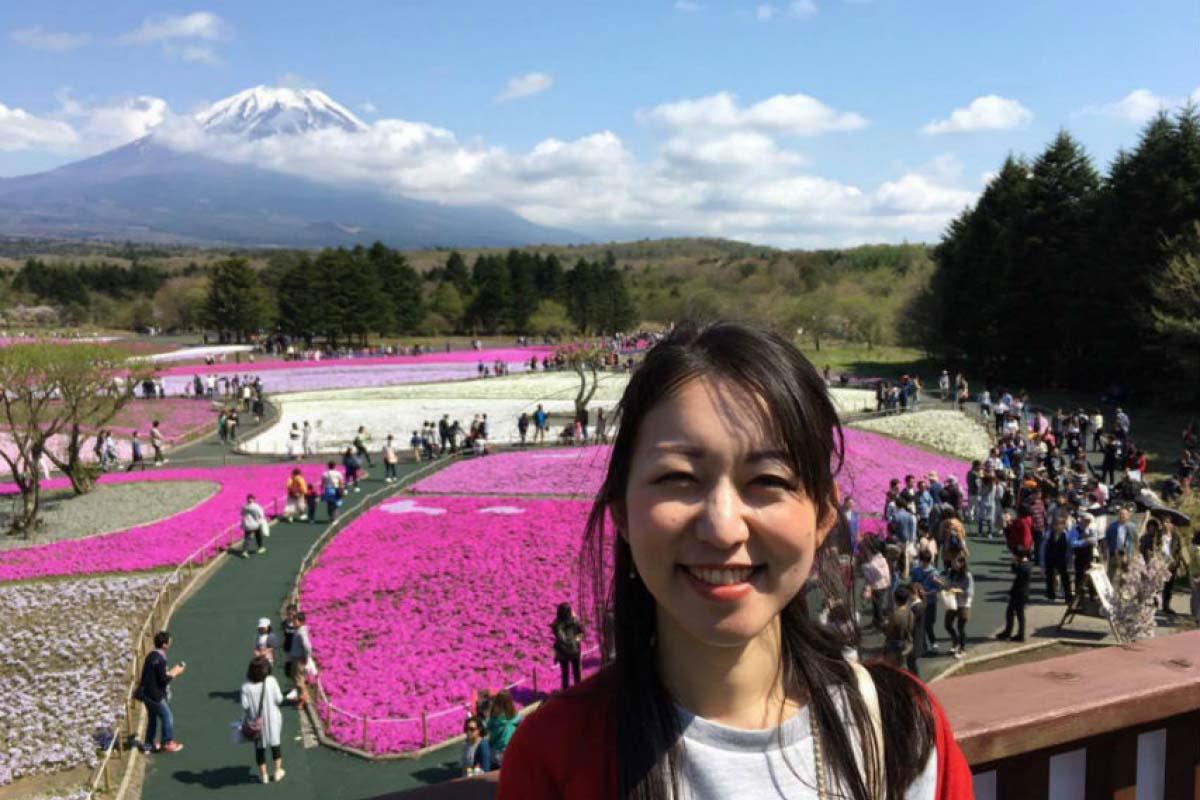 富士芝櫻祭 瞭望台