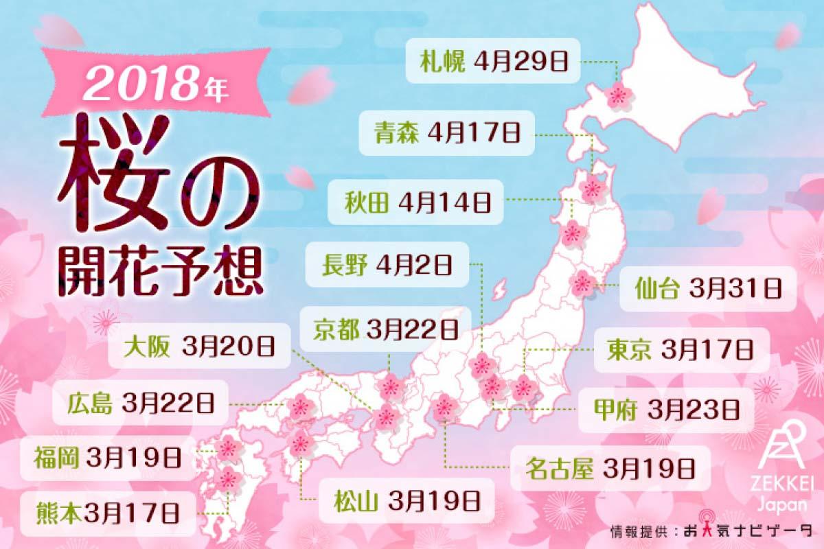 【速報】2018年 桜の開花・満開予想|編集部が選ぶ全国の桜スポット14選もお届け!