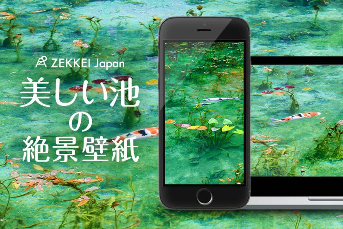 Zekkei zekkei voltagebd Image collections