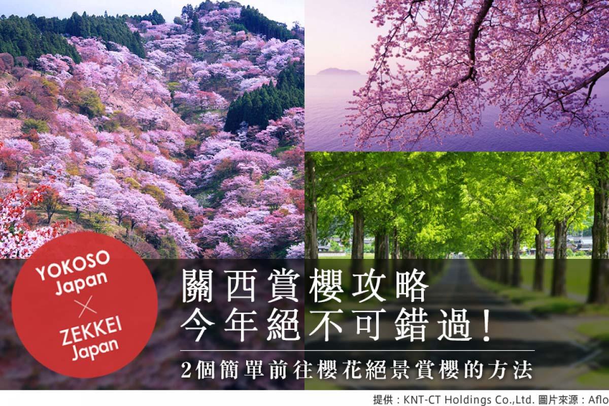 【關西賞櫻攻略】今年絕不可錯過! 2個簡單前往櫻花絕景賞櫻的方法
