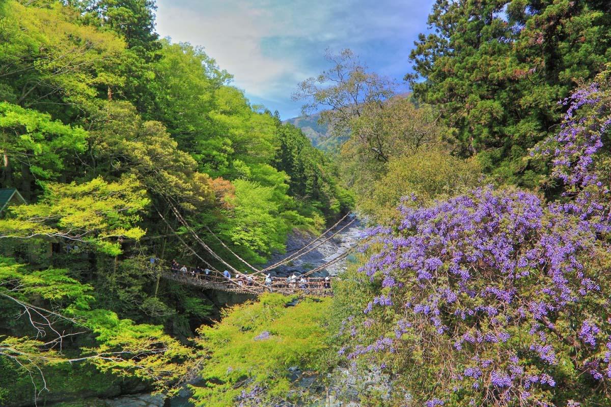 日本の原風景がここに!徳島県の秘境「祖谷(いや)」を味わう7つの方法