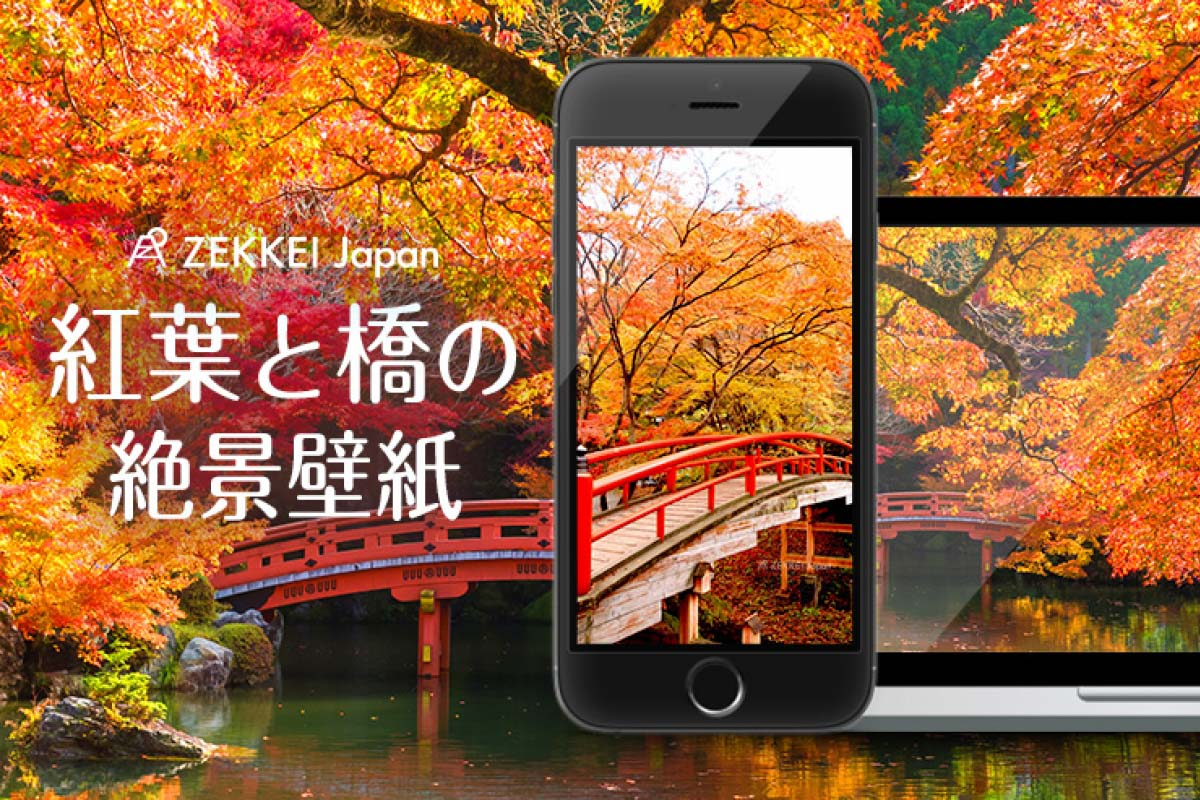 <11月の絶景壁紙>色とりどりの紅葉に包まれる「橋」の壁紙を、あなたのパソコンやスマホに