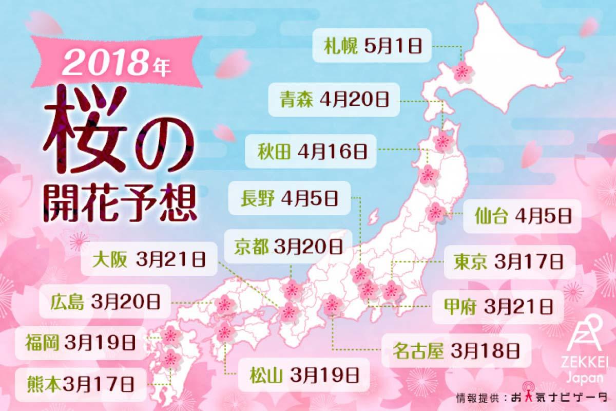 【速報】2018年日本櫻花前線預測! 外加14處編輯部精選賞櫻名所