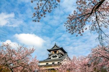桜、祭り、城下町グルメまで…春の犬山の楽しみ方