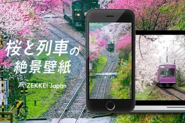 <3月の絶景壁紙>のどかな桜と列車の壁紙をあなたの待ち受けに