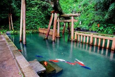 ひたち海浜公園だけじゃない!茨城のおすすめ絶景スポット7選