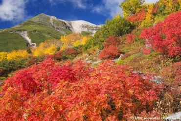日本の秋を満喫するなら紅葉の山々でハイキングしよう!