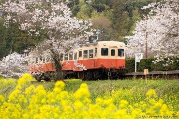 """【日本旅游指南】灵活利用""""铁路""""的方法"""