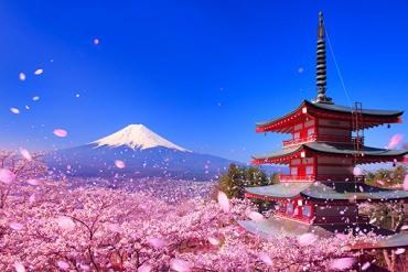 """これぞ日本の絶景!春にしか撮れない""""奇跡のトリプルショット""""を撮りに行こう"""