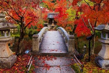 京都頭號紅葉名勝之 「永觀堂七大不可思議」