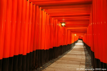 【Japan Travel Advice】  Let's Go and Worship at Shrines!
