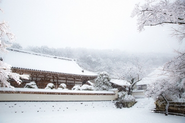 雪が降ったら訪れたい!冬の鎌倉おすすめ絶景4選