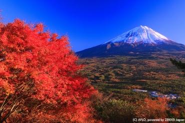 毗鄰日本世界遺產的傳統旅館10選