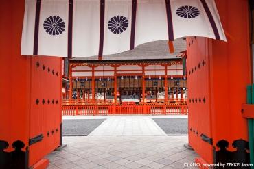 【日本。京都】漫遊稻荷山!不能不知道的5件事
