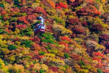 空中散歩に出かけよう!大自然を見下ろす『絶景ロープウェイ』5選