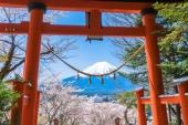 【來自ZEKKEI的挑戰書】日本神社知多少?神社小測驗