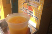 Mandarin orange juice from a faucet?!?<Travel Diary of an American Exchange Student: Part 2>