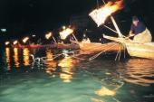 岐阜縣的夏季風情!去長良川看鸕鶿捕魚一定要知道的7大趣聞