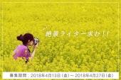 <4/27まで>日本の美しい風景が好きな方、ZEKKEI Japanで記事を書いてみませんか?