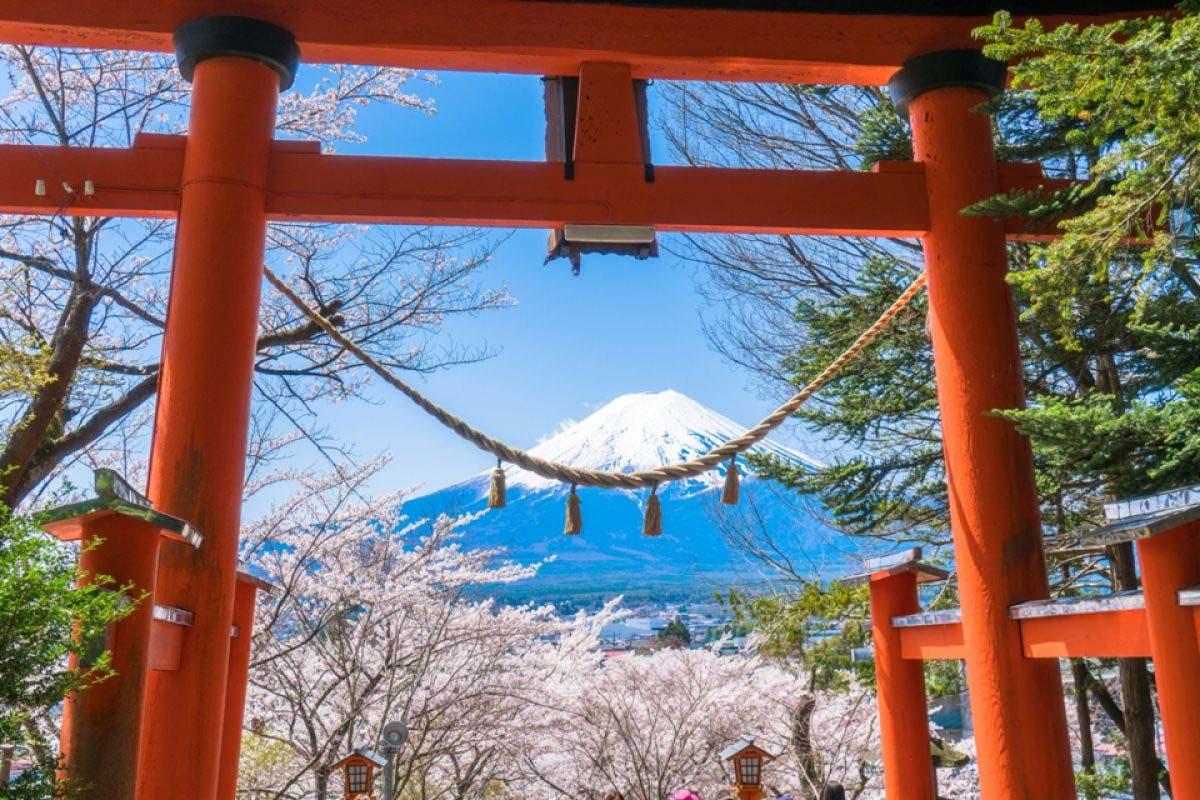 Arakura Mountain Sengen Park (Arakurayama Sengen Park)