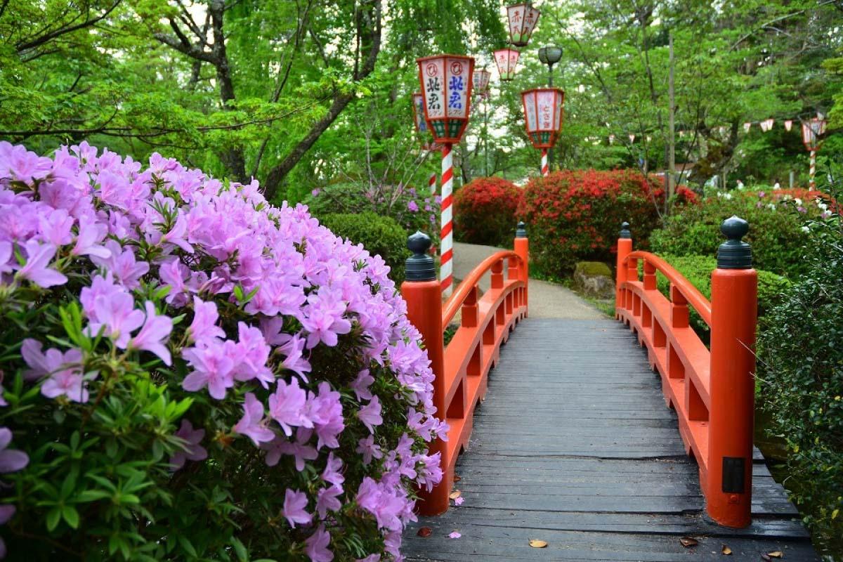 打吹公園の絶景|ZEKKEI Japan