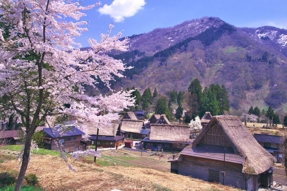 The Historic Village of Gokayama
