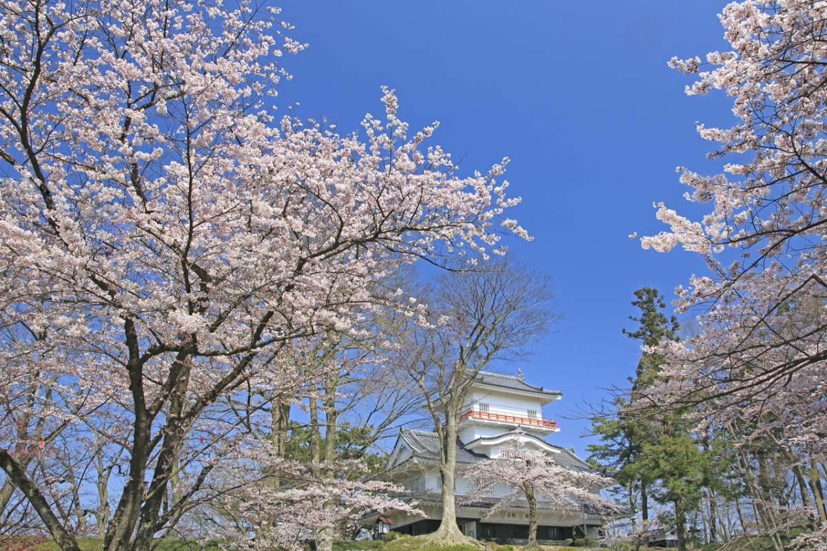 千秋公園の絶景|ZEKKEI Japan