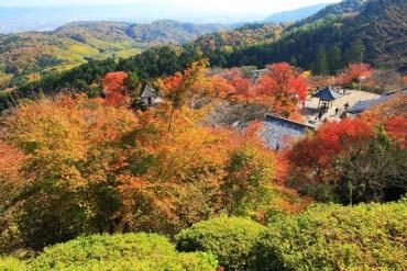 善峯寺 (京都)