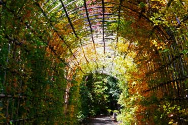 殿ヶ谷戸庭園(東京)