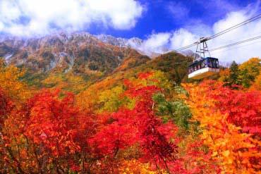 立山ロープウェイ(富山・黒部・立山)