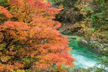 Atera Valley(Nagano)
