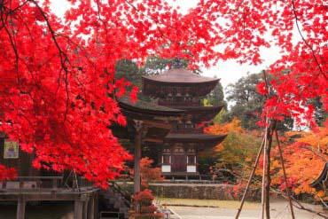 西明寺(滋賀・琵琶湖)