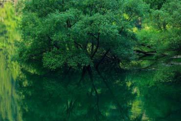 豐根綠之湖
