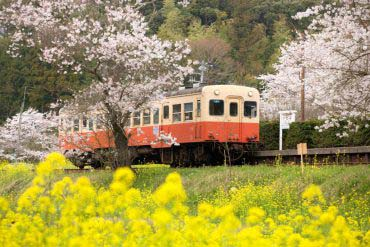 Kominato Railway(Chiba)