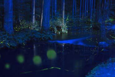 Nasu Fish Land