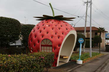 Fruits Bus Stops