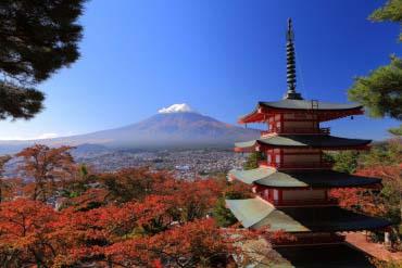 新倉山淺間公園(富士山)
