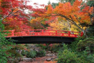 紅葉谷公園(廣島・宮島)