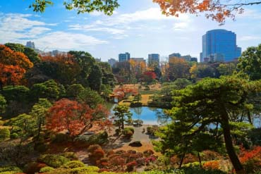 Rikugien Garden(Tokyo)