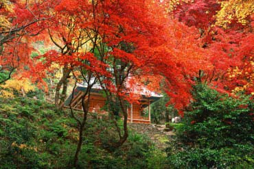 雞足寺(滋賀・琵琶湖)