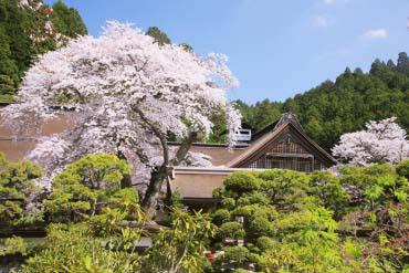 Mount Koya(Wakayama)