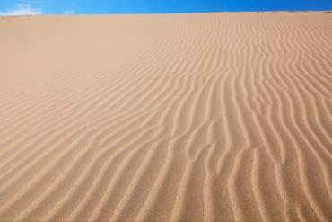 The Tottori Sand Dunes(Tottori)