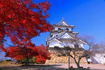 彦根城(滋賀・琵琶湖)