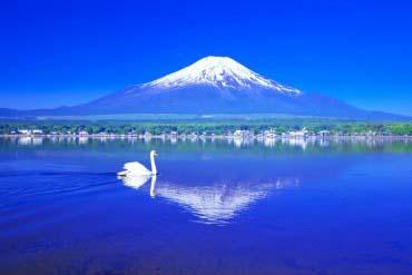 Lake Yamanaka(Mt. Fuji)