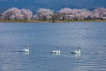 Lake Hyoko(Niigata)