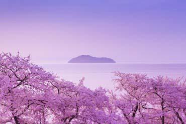 琵琶湖(滋賀・琵琶湖)